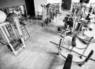 Fitness_TOP2